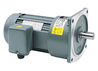 Vertical Speed Reducer Gearmotor
